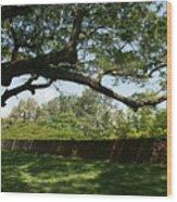 Fort Galle Wood Print