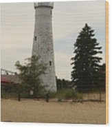 Fort Gratiot Light Wood Print