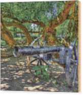 Fort Harrod Cannon Wood Print