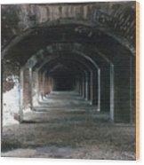 Fort Jefferson 2 Photograph Wood Print
