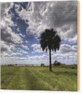 Fort Moultrie Palm  Wood Print
