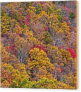 Fort Mountain State Park Cool Springs Overlook Wood Print