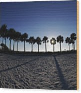 Fort Myers Beach Florida I Wood Print