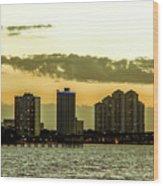 Fort Myers Skyline Wood Print
