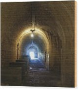 Fort Pickens Hall Wood Print