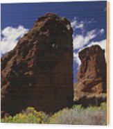 Fort Rock Twin Towers- H Wood Print