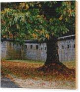 Fort Rodd Hill Wood Print