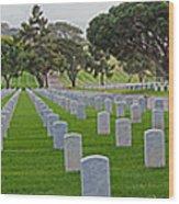 Fort Rosencrans National Cemetery Wood Print