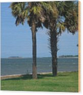 Fort Sumter Charleston Sc Wood Print
