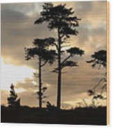 Fort Worden Sunrise Wood Print