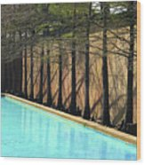 Fort Worth Water Gardens - Quiet Pool Wood Print