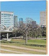 Fort Worth Wide Angle Wood Print