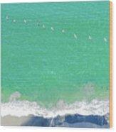 Forteen Pelicans Wood Print