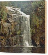 Forth Falls Tasmania Wood Print