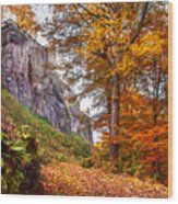 Fortification Koenigstein In Autumn Time Wood Print