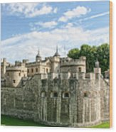 Fortress Of The Tower Of London Wood Print