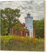 Forty Mile Point Lighthouse Lake Huron Lower Peninsilat Mi  Wood Print