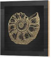 Fossil Record - Golden Ammonite Fossil On Square Black Canvas #4 Wood Print