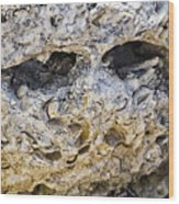 Fossil Rock Abstract - Eyes Wood Print