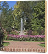 Fountain Among Flowers Wood Print