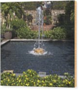 Fountain And Peppers Wood Print