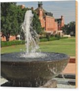 Fountain And Union Wood Print