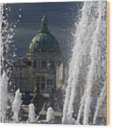 Fountain At Amalie Garden Next Wood Print