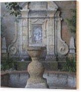 Fountain At Mission Carmel Wood Print