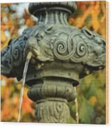 Fountain At Union Park Wood Print