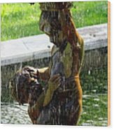 Fountain Cherubs Wood Print