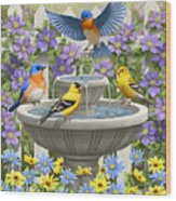 Fountain Festivities - Birds And Birdbath Painting Wood Print by Crista Forest