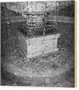Fountain Flow Wood Print