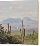 Fountain Hills Arizona Wood Print