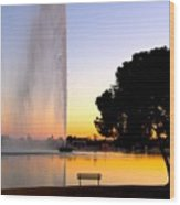 Fountain Hills Wood Print