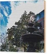 Fountain In Downtown Charleston Wood Print