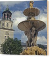 Fountain In Residenzplaz Square Wood Print