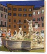 Fountain In Rome Wood Print