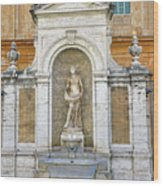 Fountain In The Vatican City  Wood Print