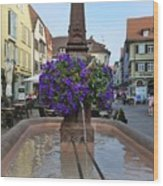 Fountain In Wertheim, Germany Wood Print