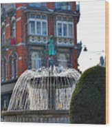 Fountain Of Brussels Wood Print