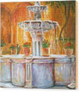 Fountain Of Truth Wood Print
