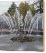 Fountain On The Grounds Of The Peterhof Grand Palace Wood Print