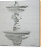 Fountain One Wood Print