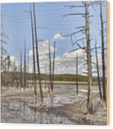 Fountain Paint Pots Lodgepole Pines - Yellowstone Wood Print
