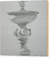 Fountain Two Wood Print