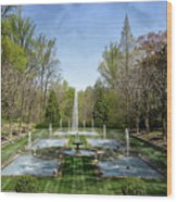 Fountains  Wood Print