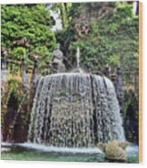 Fountains.  Tivoli. Wood Print