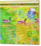 Four Canadian Geese In The Water 1 Wood Print