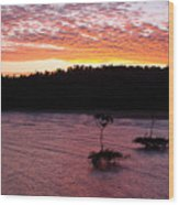 Four Elements Sunset Sequence 5 Coconuts Qld  Wood Print