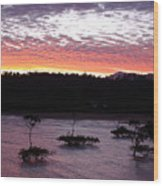 Four Elements Sunset Sequence 8 Coconuts Qld  Wood Print